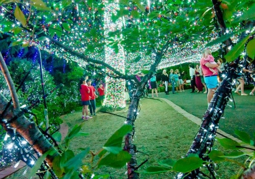 Glebe Park Christmas Lights