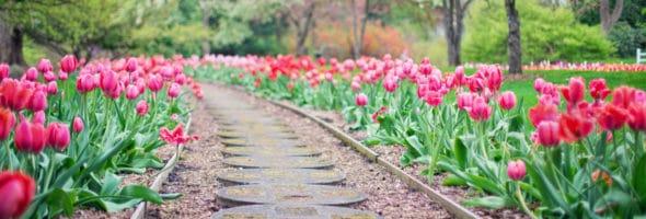 Best Gardens in the World