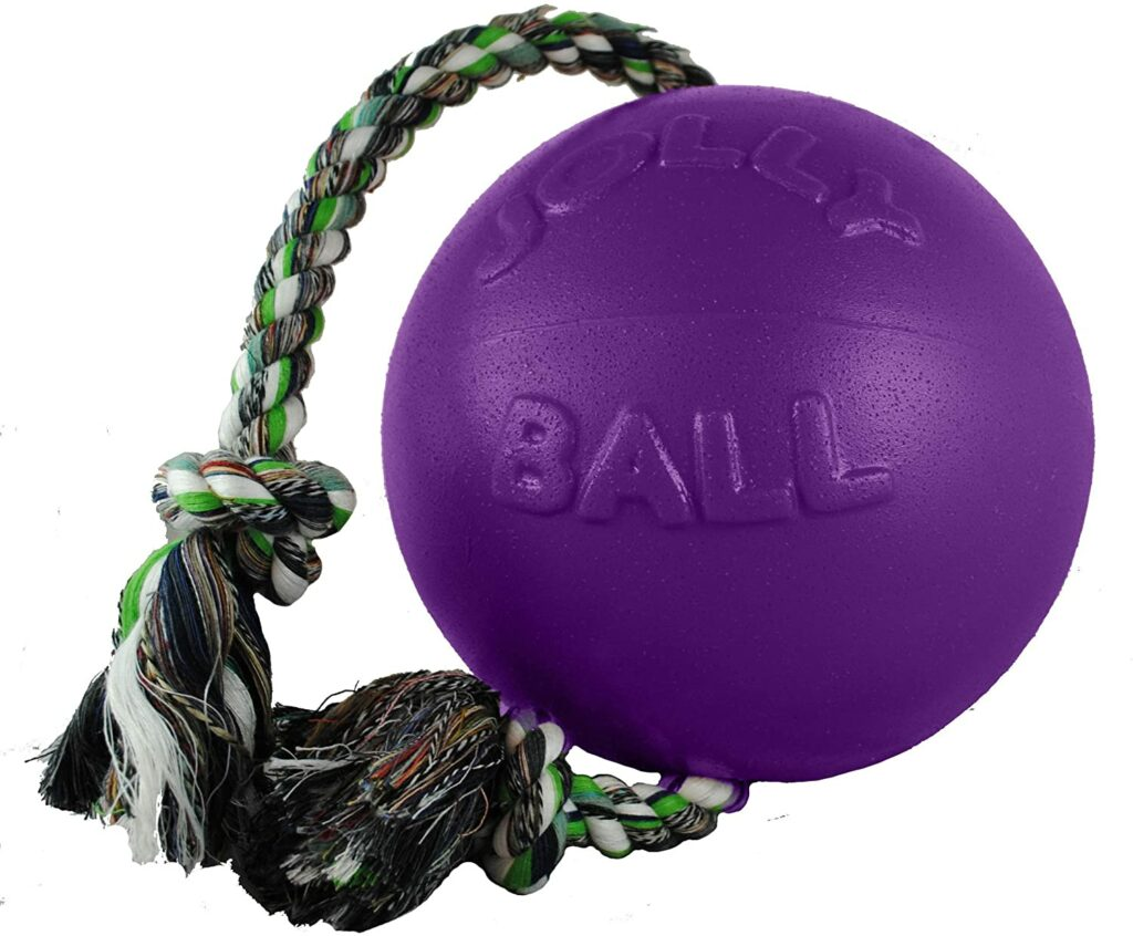 Rope and Ball Dog Toy
